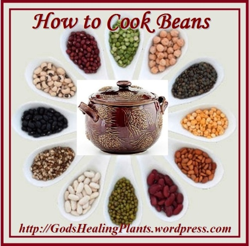 COOKING BEANS CLWS