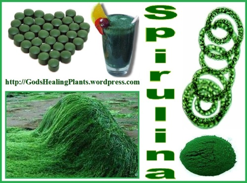 Spirulina clws