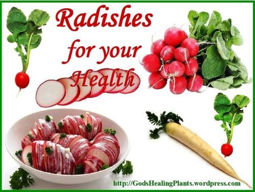 Radish GHP