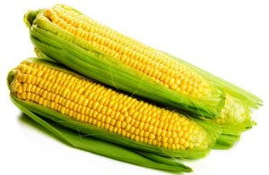 sweet-corn-clean15jpg-lg
