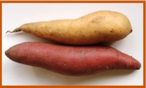 yam_sweetpotato