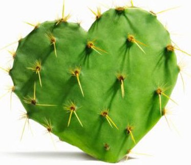 "prickly pear cactus ""nopal"" benefits 