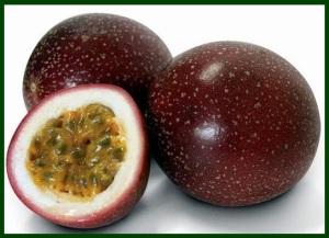 Passion fruit purple