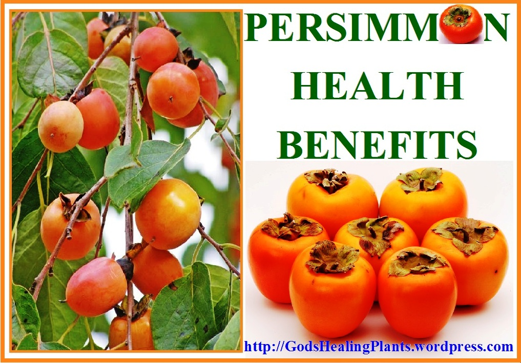 persimmon fruit most healthy fruits