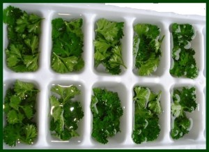 Frozen parsley