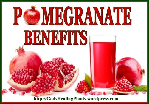 Pomegranate GHP