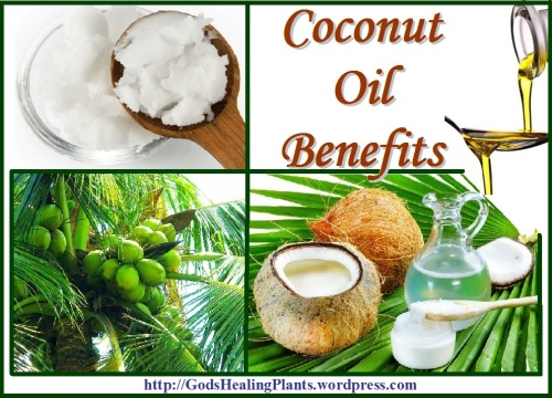 coconut oil GHP