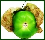 Tomatillo ws 9
