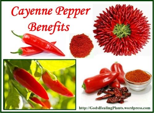 Cayenne pepper GHP