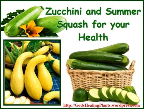 Zucchini GPH