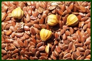 flaxseed 2ws