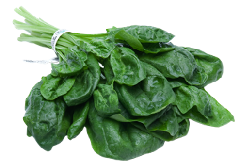 SPINACH FOR YOUR HEALTH | God's Healing Plants