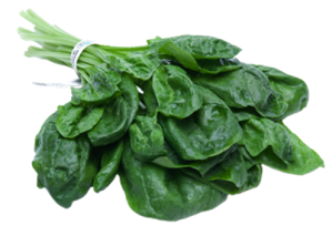 spinach 4