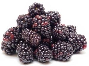 Mulberries bunch
