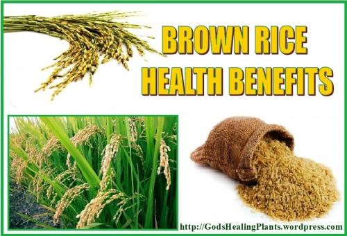 brown rice GHP