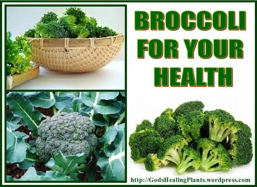 Broccoli GHP