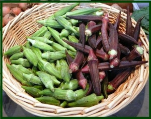 green-okra-red-okra ws