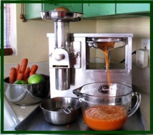Grind and press juicer