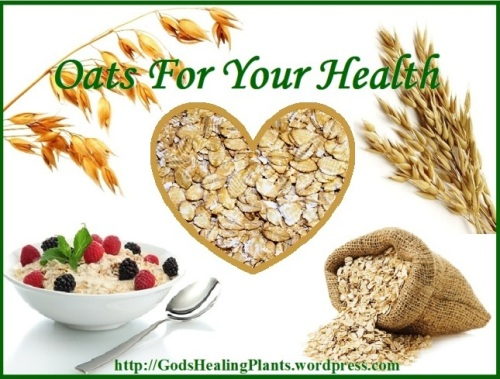 OATS GSWTH WS