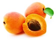 apricot 3