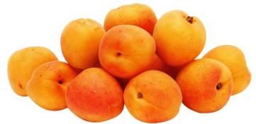 apricot 7