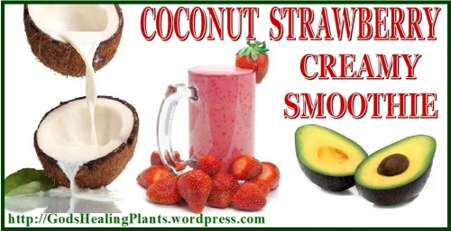 Coconut Strawberry Smoothie GHP